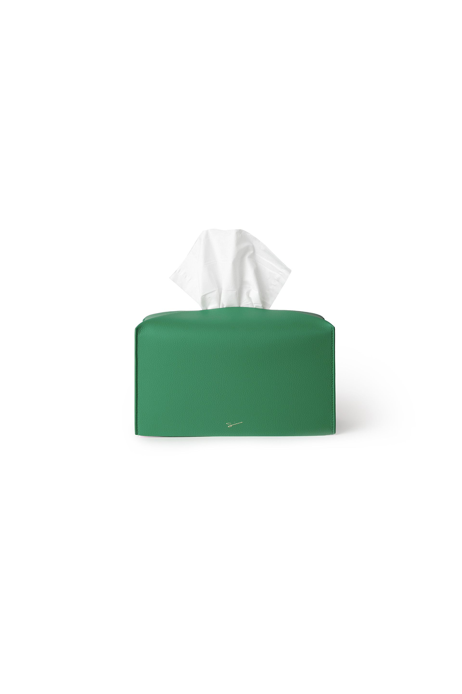 TISSUE CASE L 11 Tamani Green