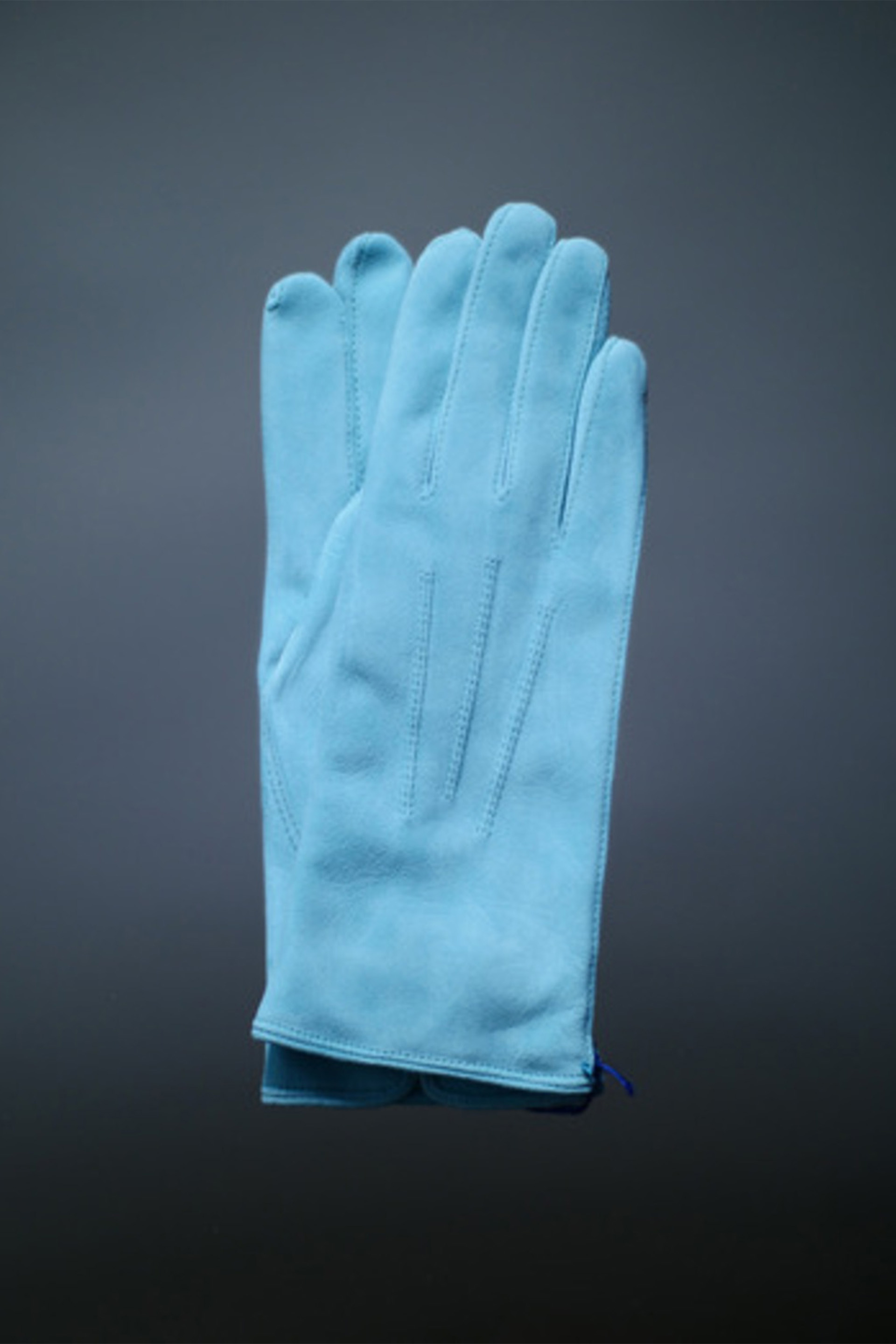 Thomas Riemer Gloves (Danubio)